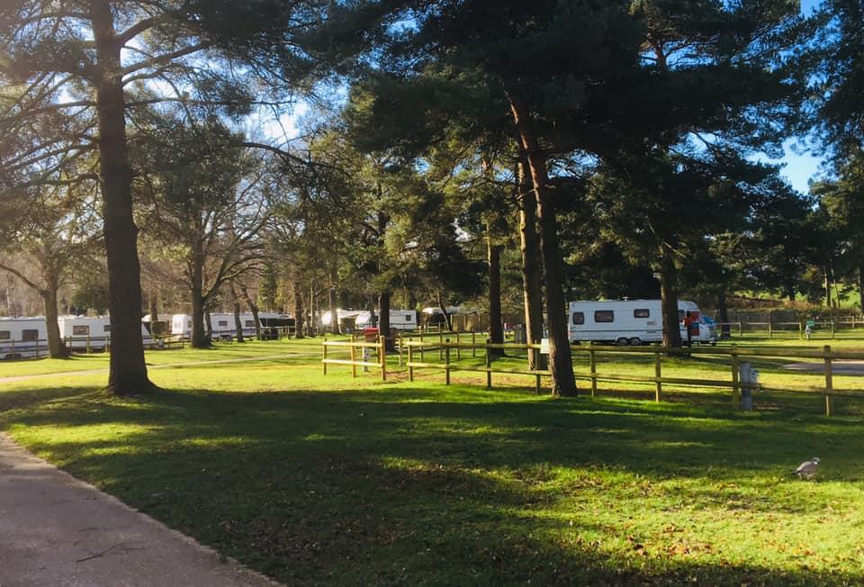Sandford Park, Wareham 12th to 16th March 2020