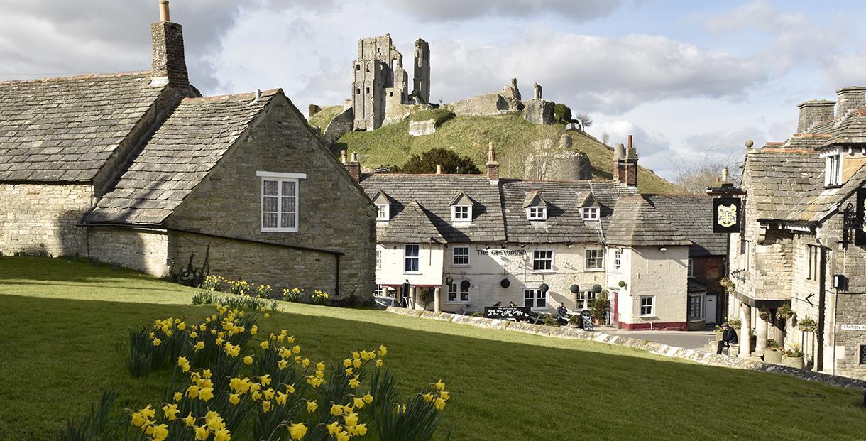 Norden Farm, Corfe Castle un-booked meet October 7th to 10th