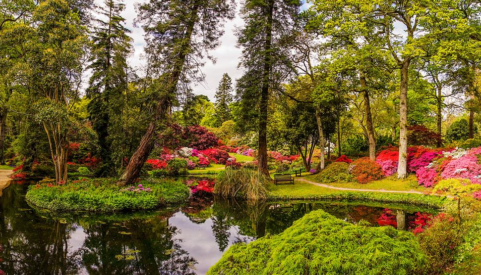 Lower Exbury Gardens booked meet 13th to 16th May