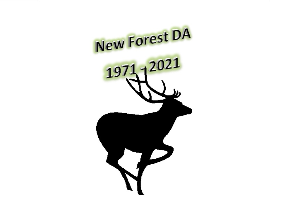 The first 21 Years of New Forest DA