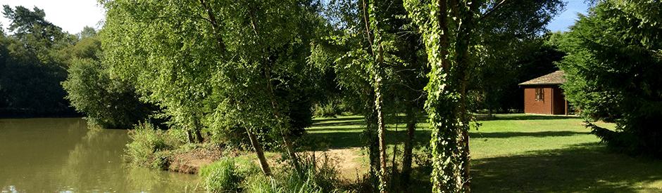 Warren Park Farm Alderholt 5th to the 8th of August
